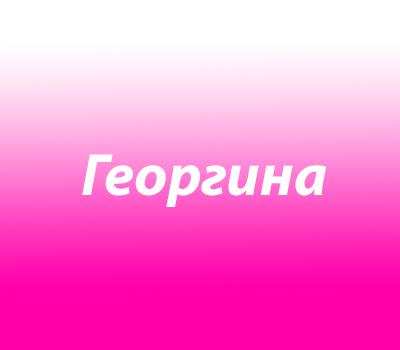 Георгина