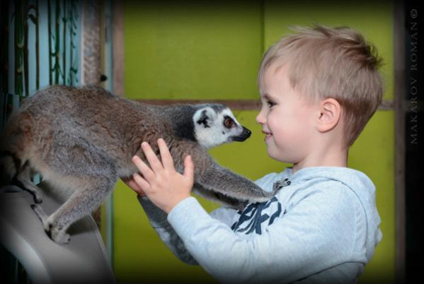 Зоопарк ребенок