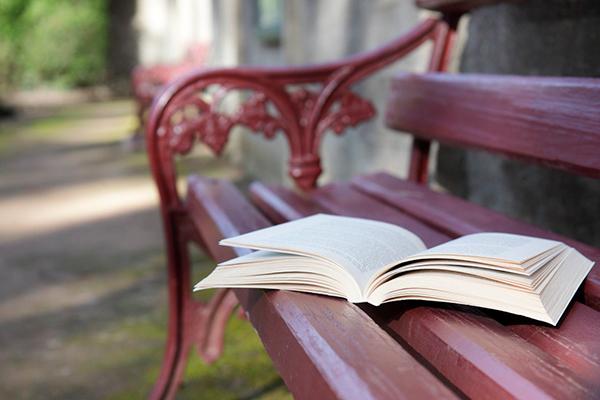 Литературные скамейки