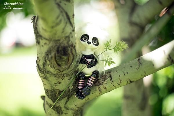 бжд панда Маши Жуковой