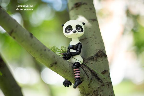 панда Маши Жуковой