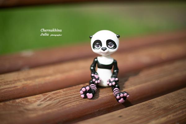 бжд панда