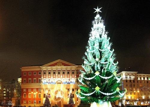 Новогодняя елка на Тверской площади