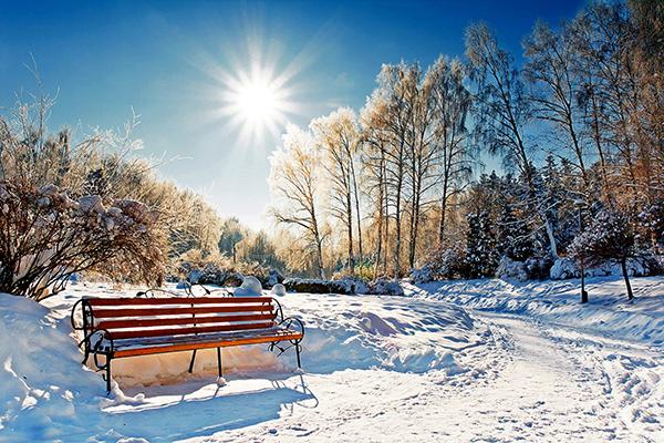 теплые скамейки