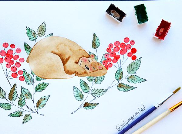ботаника, рябина, медведь