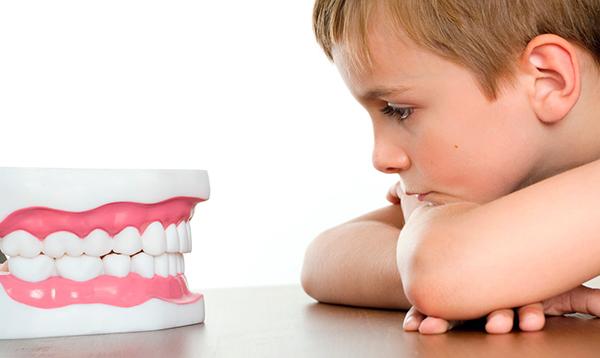 зубная паста LifeEssence