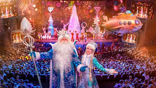Крокус День Рождения Деда Мороза
