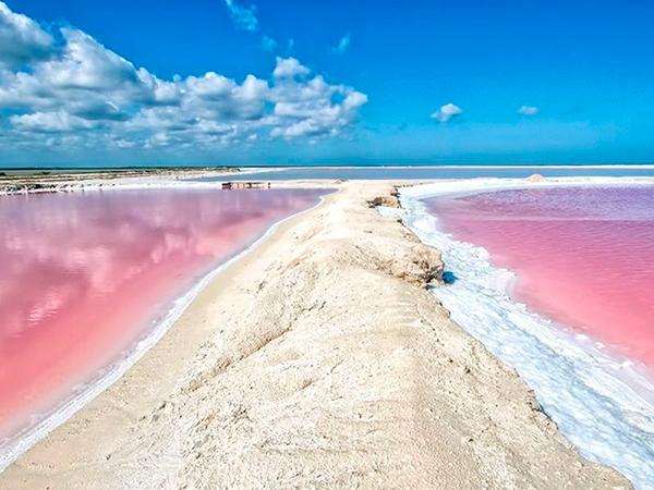 розовые озера Лас-Колорадас Мексика