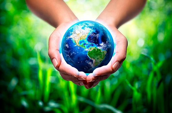 социальные и эко-кампании осени